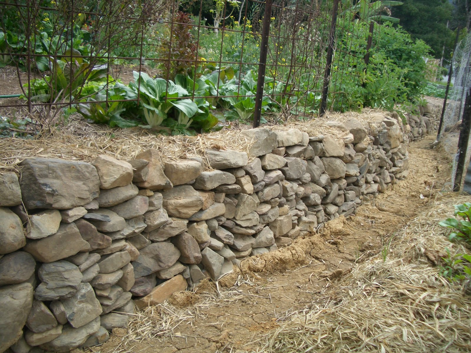 Awesome This Wall Stops The Erosion Of The Higher Swale Wall And Stops Garden Beds  From Being Washed Into The Swale. Water Can Still Seep Through The Rock Wall  Into ...
