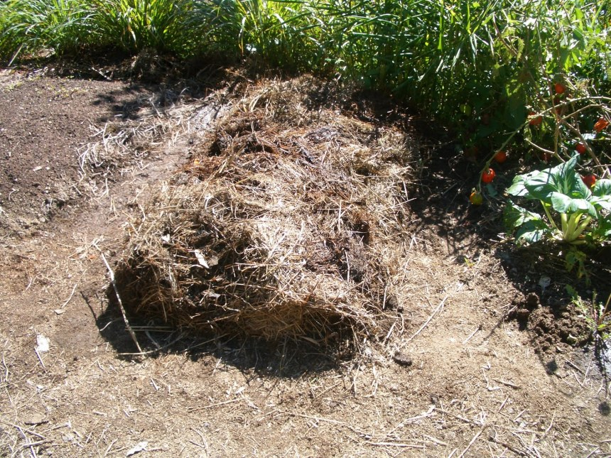 Creating a permaculture garden bed, using homemade compost and mulch
