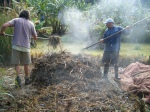Turning the 18 day compost (see article)