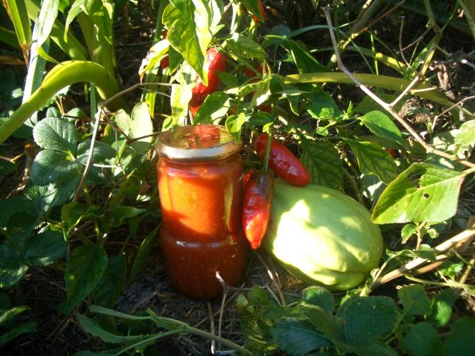 Permaculture recipe: ChilliChoko sauce