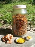 Tumeric tablets, dried, powdered and fresh from our permaculture gardens