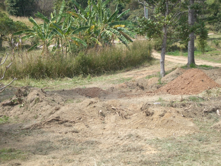 Removing trees to prepare for the Earthworks course, and testing the soil