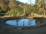 The finished dam with reflection of the banana trees...