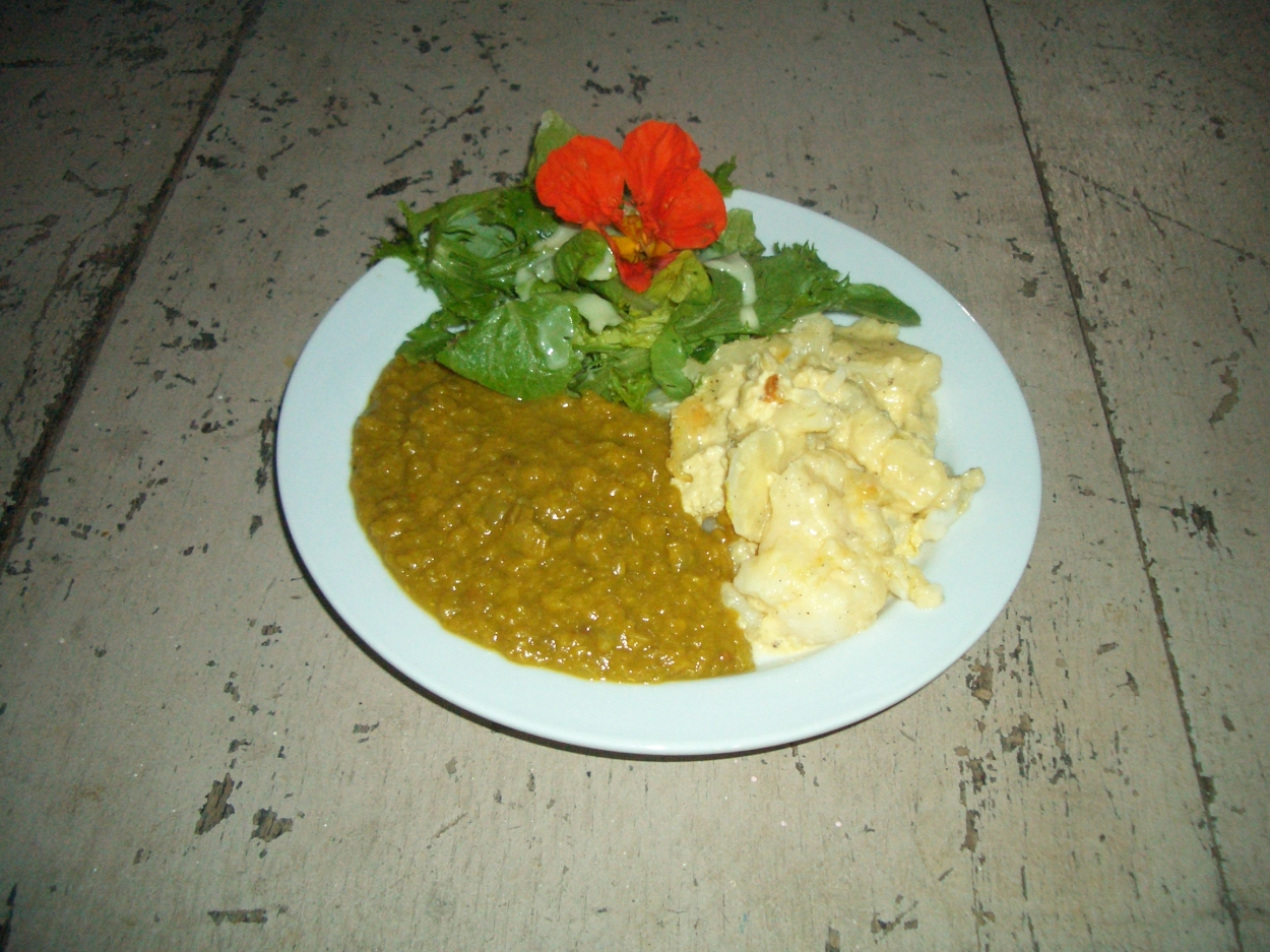 Dahl, with potato bake and a green garden salad with a nasturtium and avocado dressing.