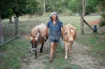 Permaculture animal systems and animal routines, extremely important for health and wellbeing of the animal.