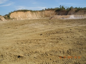 The old mine site, heavily compacted over acid producing material, capped with 3 mts of compacted clay and 500mm of very poor soil