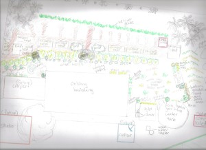 The first design for our Urban Permaculture site