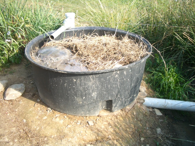 Grey water compost worm grease trap