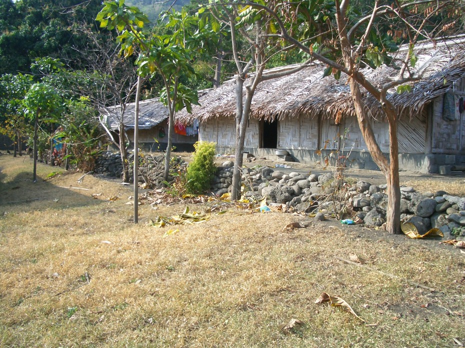 Bamboo house in Vanuatu