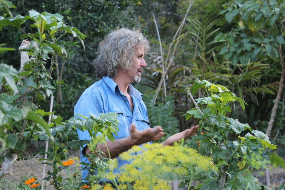 Tom Kendall teaching a Permaculture Design Certificate course at Maungaraeeda