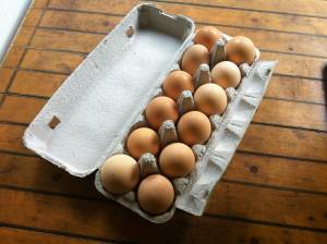Chicken eggs from Maungaraeeda, Sunshine Coast
