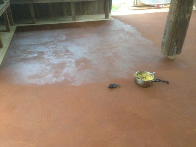 Tom Kendall waxes his earthen floor at Maungaraeeda