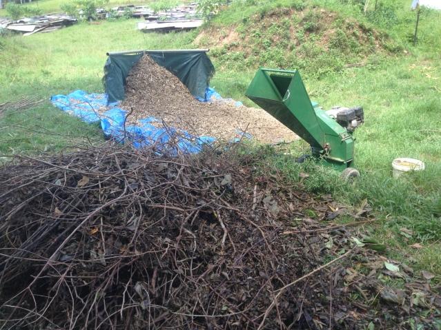 Tom Kendall chips goat forage waste at Maungaraeeda.