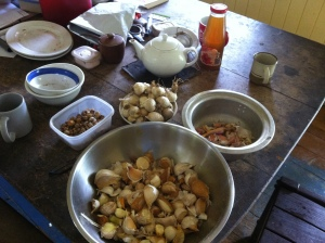 Sorting our garlic harvest over morning tea at Tom and Zaia's permaculture farm