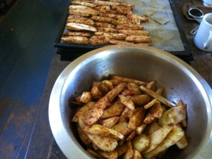 Cinnamon choko chips at Zaia and Tom Kendall's permaculture farm Maungaraeeda