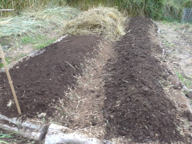 Tom Kendall mulches his composted garden beds at Maungaraeeda.