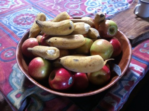 Afternoon tea fruit bowl during the PDC course Permaculture Design Certificate course run by PRI Sunshine Coast