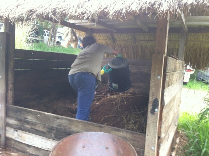 Dave emptying the compost toilet on the humanure pile
