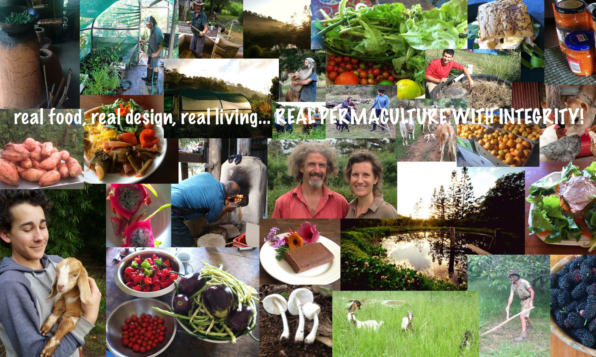 Kendall Permaculture